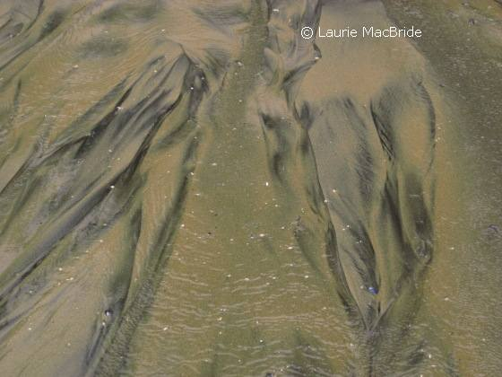 Patterns in sand left by tide