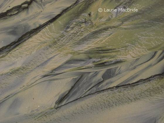 Patterns left in sand by outgoing tide
