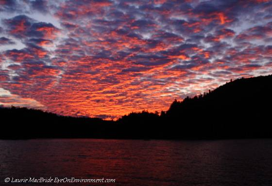 Red morning sky, Quadra Island