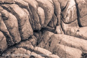 Folds in rock, close-up