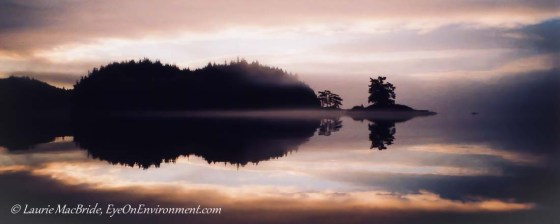 Silihouetted island, shrouded in fog, and sunrise reflected in water