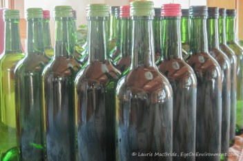 Rows of bottled wine