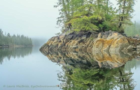 Rocky shoreline reflected
