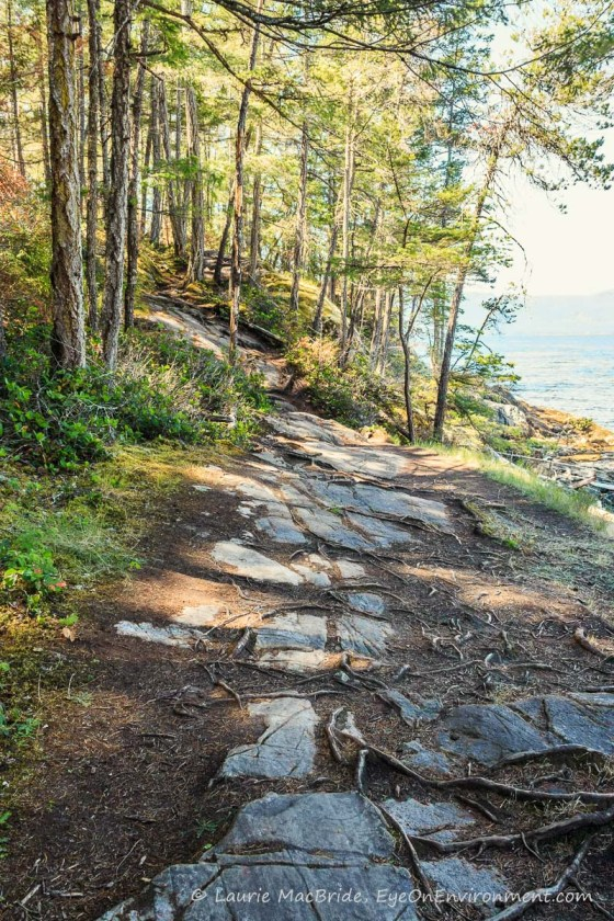 Seaside trail of stones along a bluff
