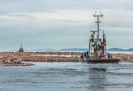 Tugboats moving a large log boom