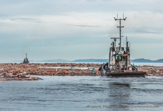 Tugboats moving a large log boom